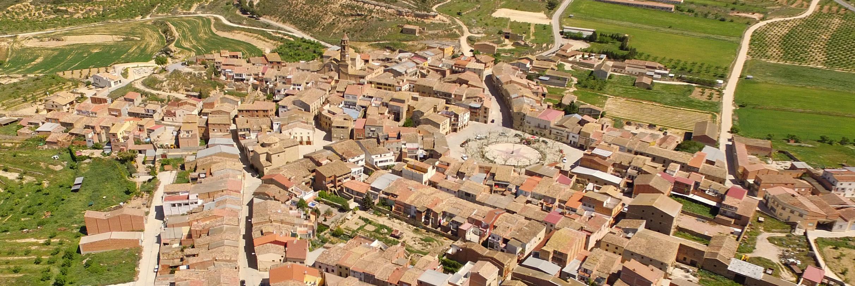 Ple Municipal - Ajuntament de Llardecans